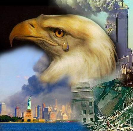 Name:  eagle tear.jpg Views: 65 Size:  35.7 KB